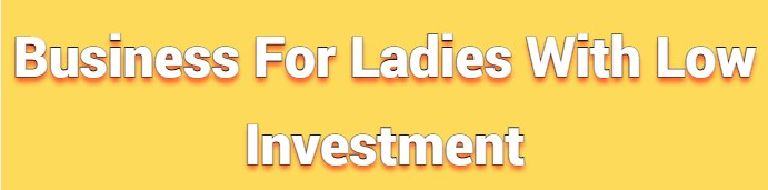 Business For Ladies With Low Investment